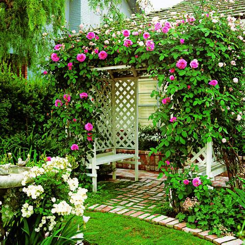 arbor-roses-m-x (500x500, 133 Kb)