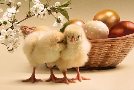 Пасха - самый светлый праздник  в году  57172729_1270014400_6a00e009867f438833011570137373970b800wi