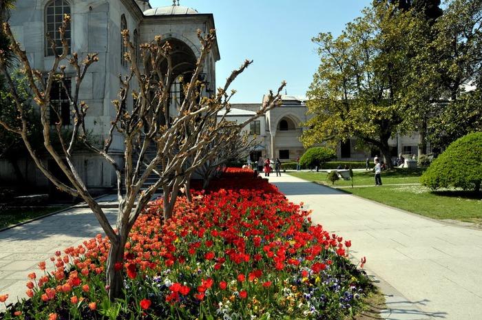 Дворец Топкапы (Topkapi Sarayi)-«турецкий Эрмитаж» 49428