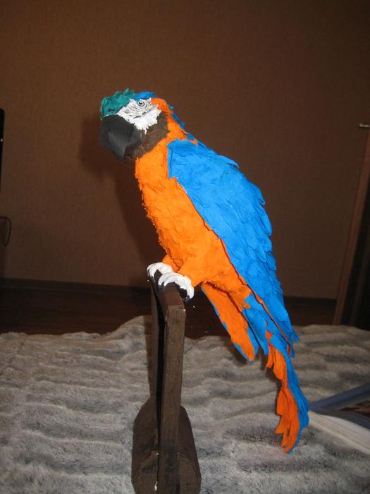 Мой попугай из бумаги.
