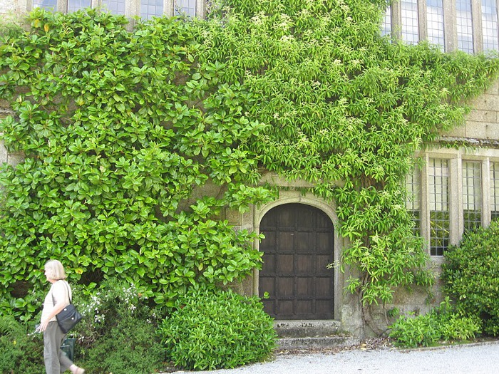 Замок Lanhydrock, графство Корнуолл. 37209