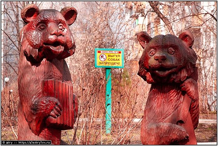 Выгул собак запрещён медведями