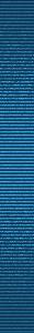 (31x300, 16Kb)
