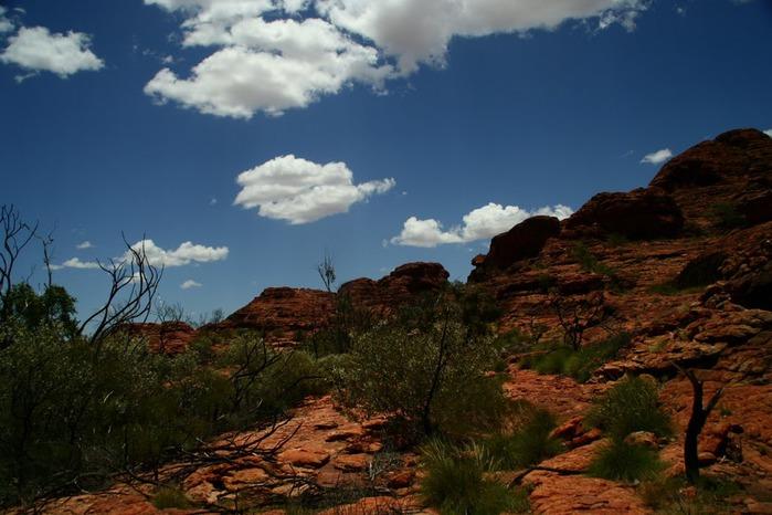 Королевский Каньон в Австралии 27772