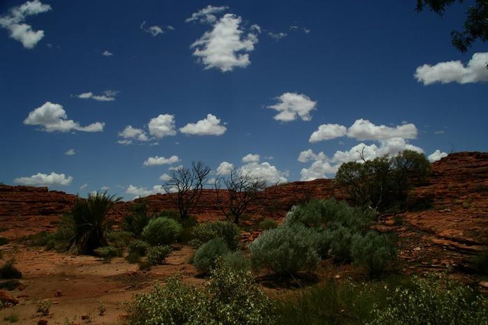 Королевский Каньон в Австралии 57010