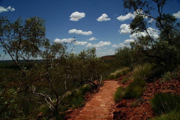Королевский Каньон в Австралии 50872