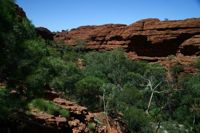 Королевский Каньон в Австралии 58342