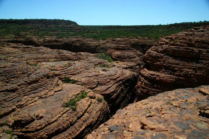 Королевский Каньон в Австралии 29505