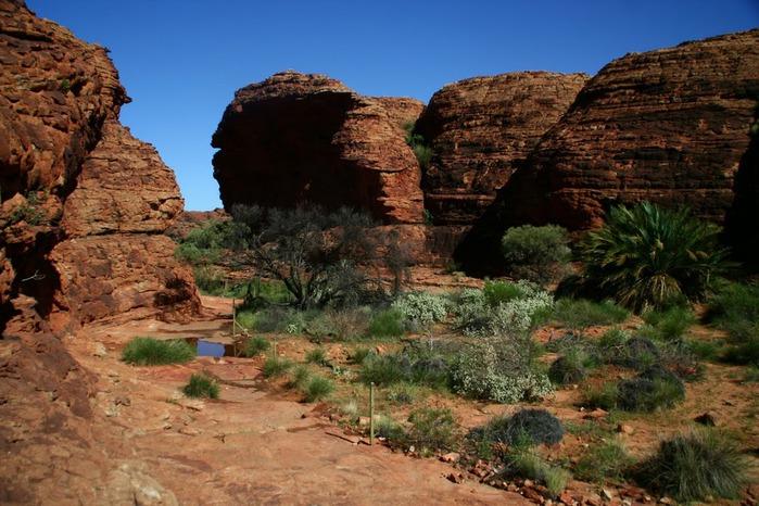 Королевский Каньон в Австралии 59788