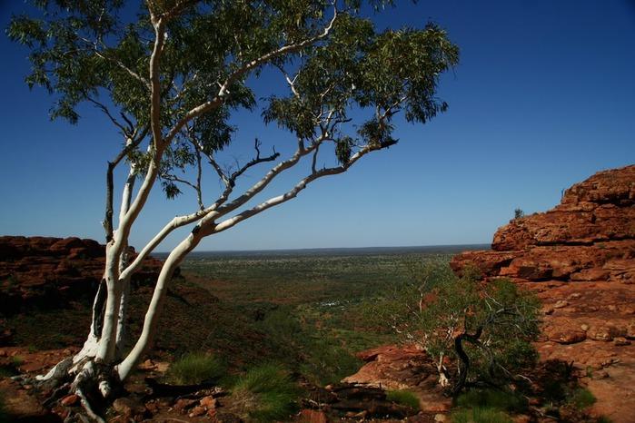 Королевский Каньон в Австралии 17868