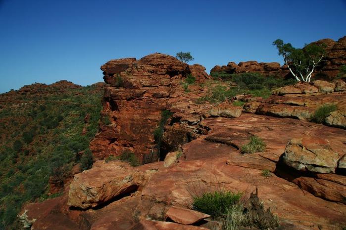 Королевский Каньон в Австралии 79859