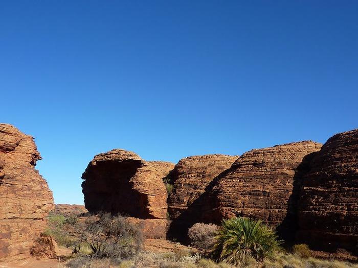 Королевский Каньон в Австралии 12752