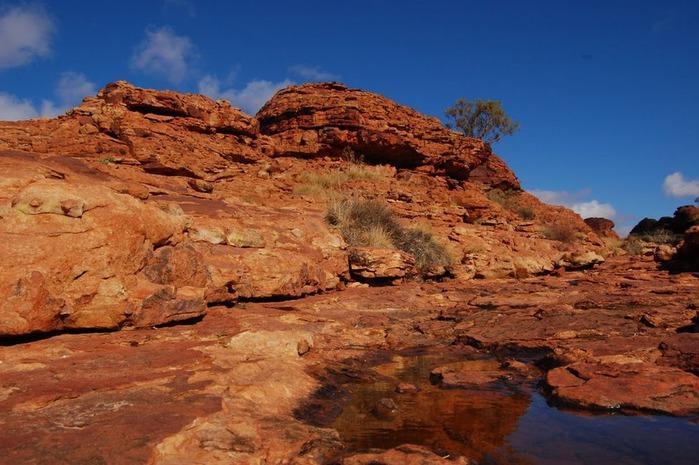 Королевский Каньон в Австралии 82372