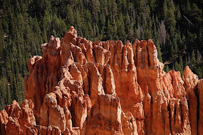 Национальный Парк Брайс Каньон (Bryce Canyon National Park, Utah) 26678
