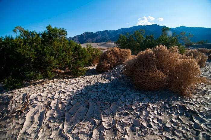 Национальный парк Долина Смерти | Death Valley National Park 43790