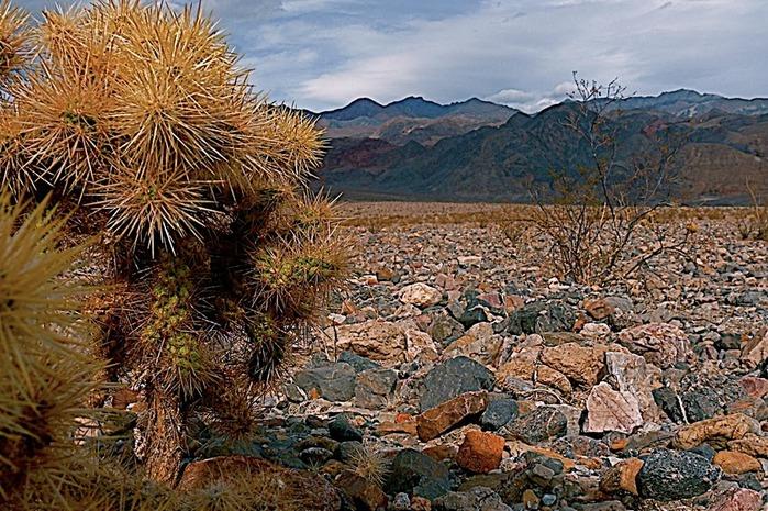 Национальный парк Долина Смерти | Death Valley National Park 41433