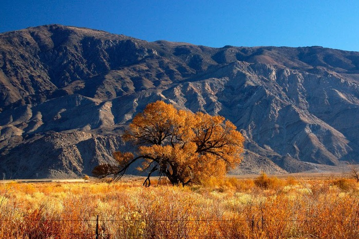 Национальный парк Долина Смерти | Death Valley National Park 15920