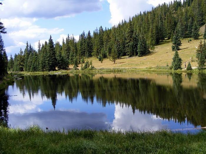 Национальный парк Rocky Mountain 15160