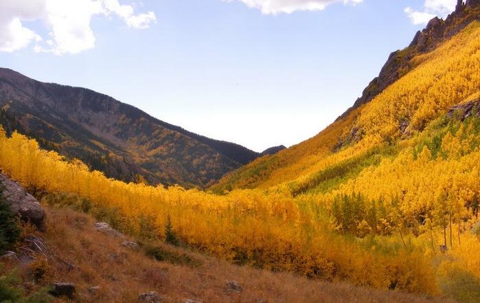 Национальный парк Rocky Mountain 86739