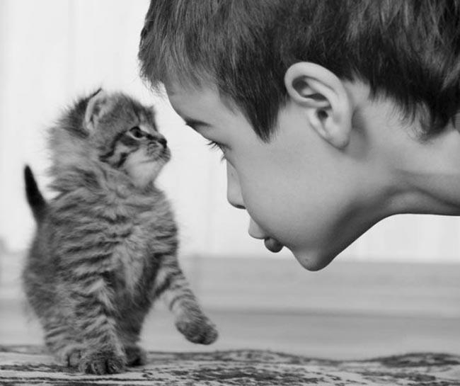 conversation between man and boy kitty