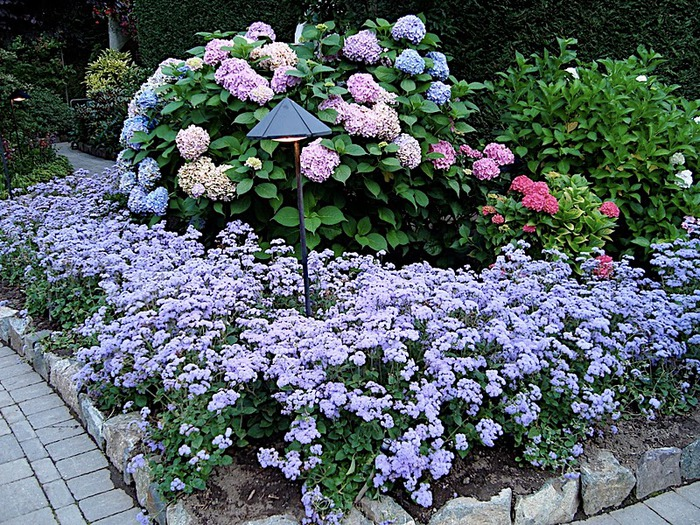 Сады Бучартов на острове Ванкувер. The Butchart Gardens. 87542