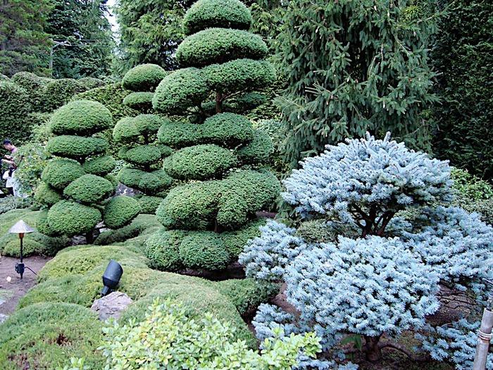 Сады Бучартов на острове Ванкувер. The Butchart Gardens. 74385