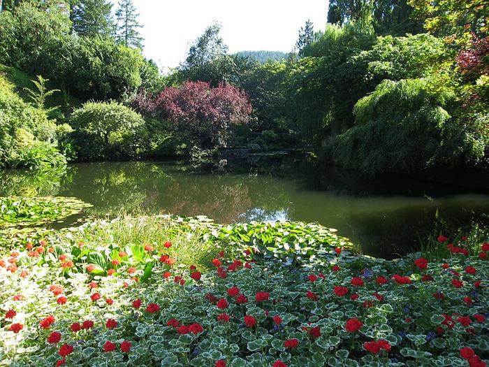 Сады Бучартов на острове Ванкувер. The Butchart Gardens. 20672