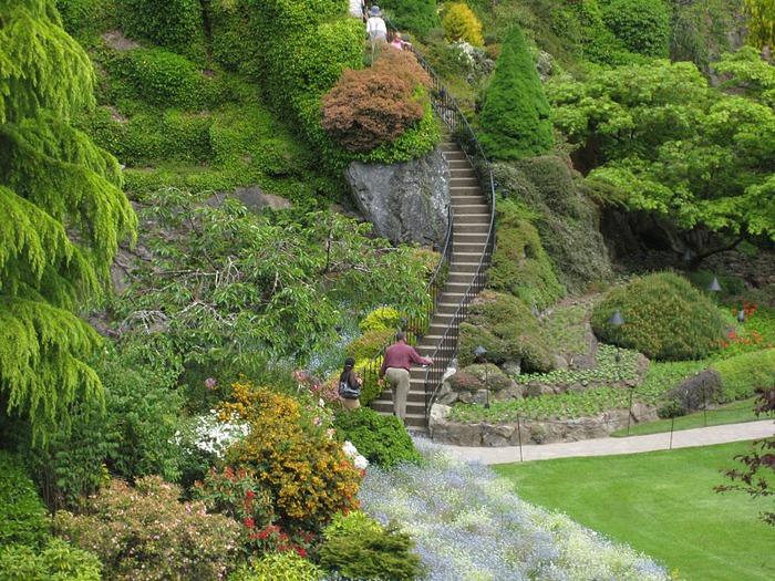 Сады Бучартов на острове Ванкувер. The Butchart Gardens. 83167