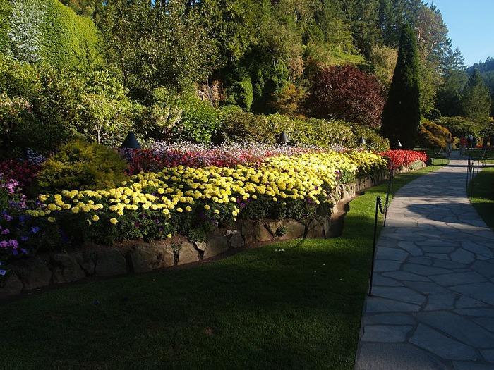Сады Бучартов на острове Ванкувер. The Butchart Gardens. 46345