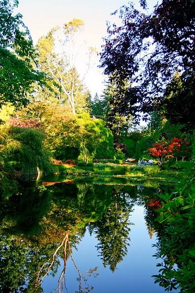 Сады Бучартов на острове Ванкувер. The Butchart Gardens. 14721