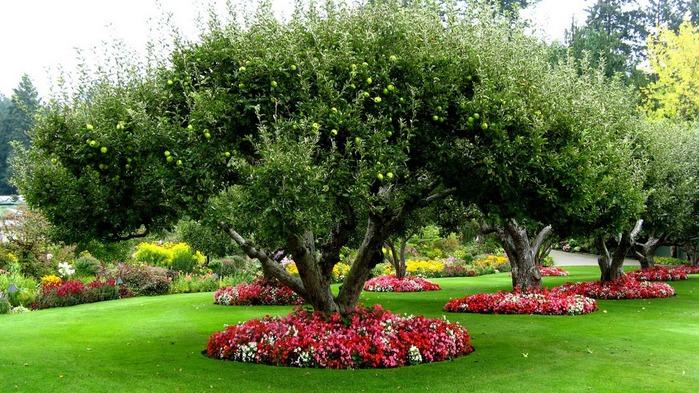 Сады Бучартов на острове Ванкувер. The Butchart Gardens. 50220