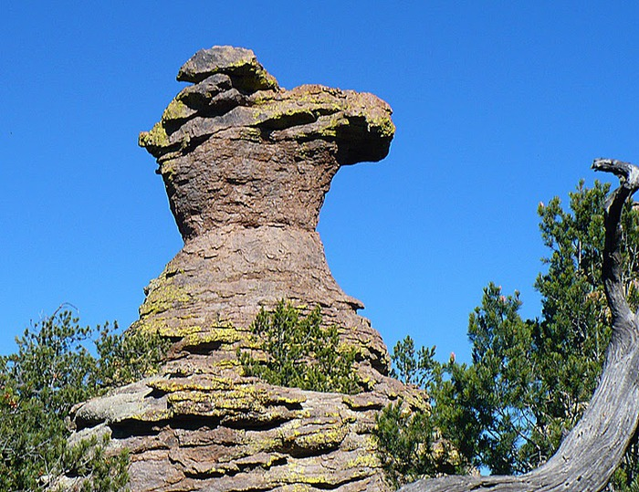 Аризона: Парк 'Chiricahua' - CHIRICAHUA NATIONAL MONUMENT 43190