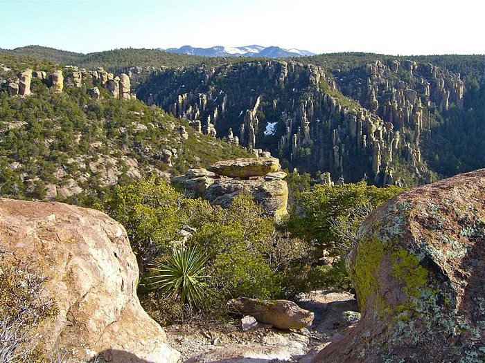 Аризона: Парк 'Chiricahua' - CHIRICAHUA NATIONAL MONUMENT 20365