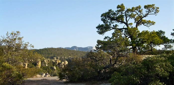 Аризона: Парк 'Chiricahua' - CHIRICAHUA NATIONAL MONUMENT 30003