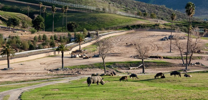 Парк Диких Животных (Wild Animal Park), San Diego 52397