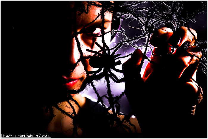 Spider's Queen