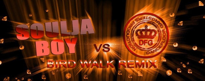 Soulja Boy - Bird Walk (DanceFloor Gangsters Remix Promo Cut)