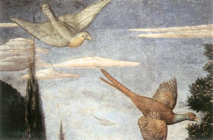 Палаццо Медичи-Риккарди (Palazzo Medici Riccardi) 85729