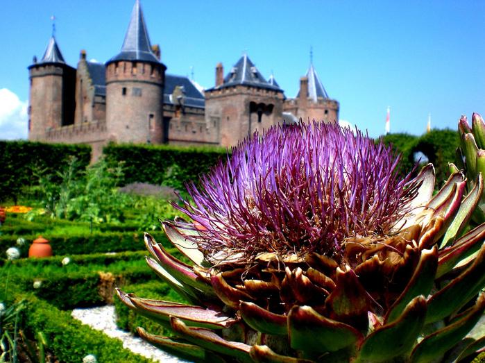 Мейдерслот - Muiden Castle, The Netherlands 13936