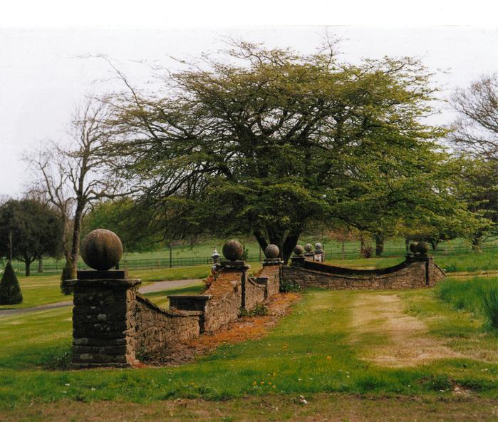 Замок Глайн (Glin Castle) графство Лимерик 45246