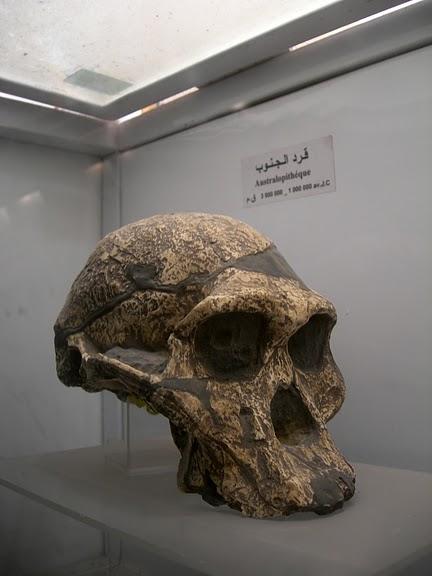 Le musee national du Bardo / Музей Бардо (Тунис) 94032