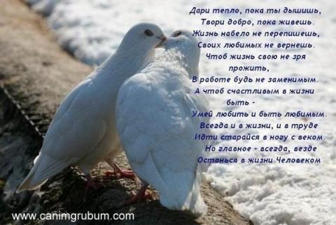 http://img0.liveinternet.ru/images/attach/c/1//58/782/58782173_dari_teplo.jpg