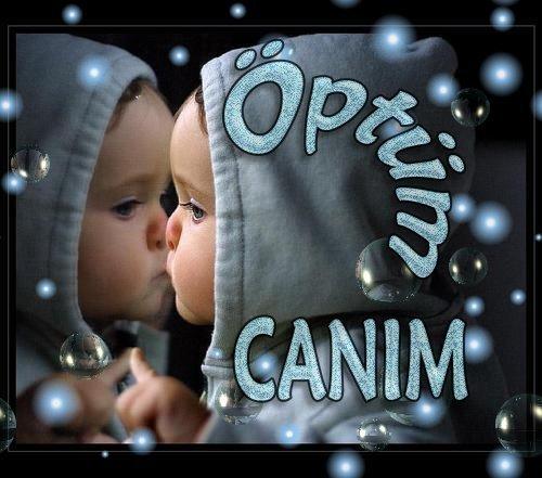 optum canim (500x441, 47 Kb)