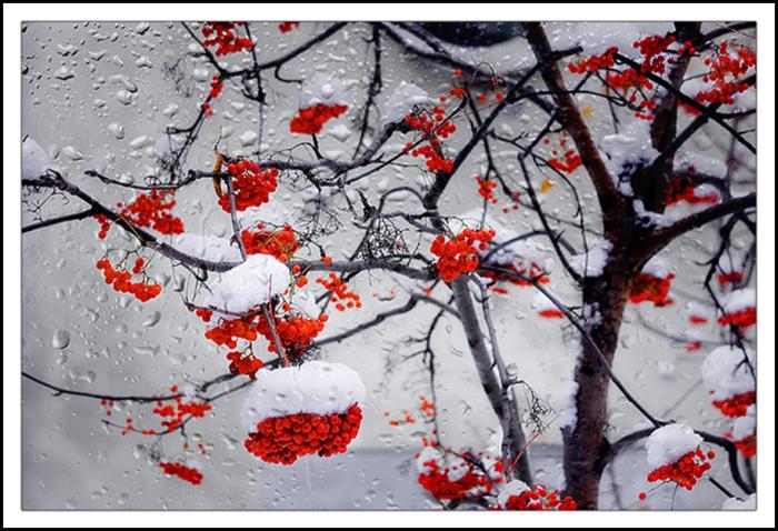 Фотограф Евгений Потанин