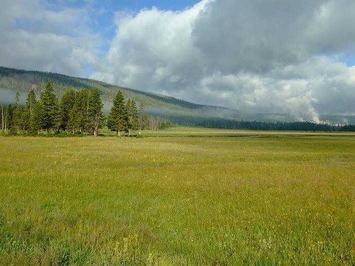 Национальный Парк Йеллоустоуна (Yellowstone National Park) 11031
