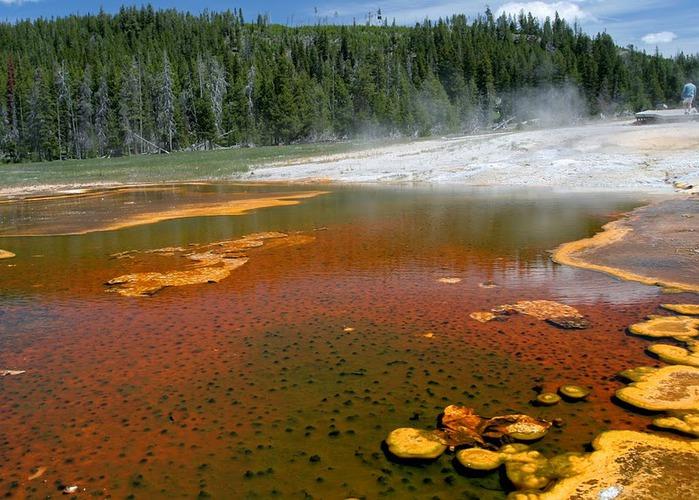 Национальный Парк Йеллоустоуна (Yellowstone National Park) 37148