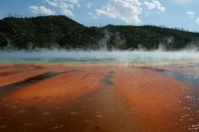 Национальный Парк Йеллоустоуна (Yellowstone National Park) 12997