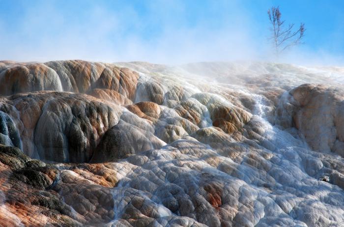 Национальный Парк Йеллоустоуна (Yellowstone National Park) 63600