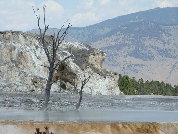 Национальный Парк Йеллоустоуна (Yellowstone National Park) 80021