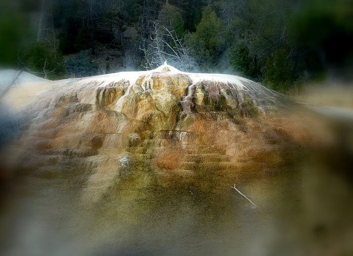 Национальный Парк Йеллоустоуна (Yellowstone National Park) 12590
